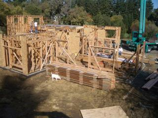 [Framing progress with reused lumber roof joists in foreground]
